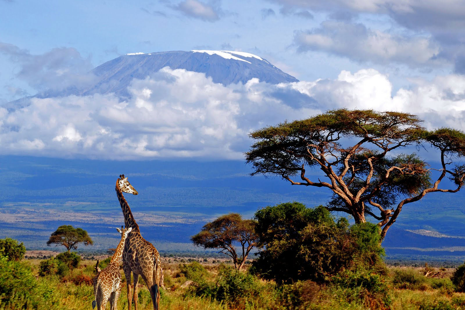 Tanzania Country Information – All about Tanzania